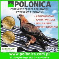 01POLONICA.jpg